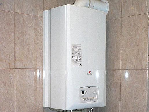 Котел газовый saunier duval themaclassic f25 (h-ua) + дымоход.